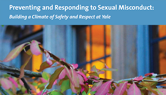 Cover of brochure Preventing and Responding to Sexual Misconduct